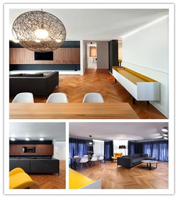 明亮现代的SPring公寓装修设计(组图)