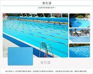 泳池防水装饰胶膜