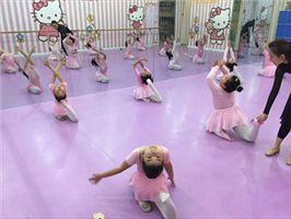 舞蹈地胶 PVC舞蹈房地板胶 练功房弹性地板卷材