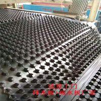 杭州车库绿化排水板台州2公分蓄排水板