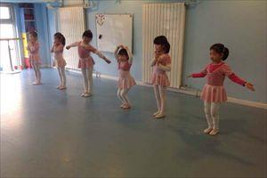 舞蹈地板 PVC舞蹈教室安全塑胶地板