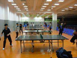 山东海阳体育木地板,乒乓球地板价格
