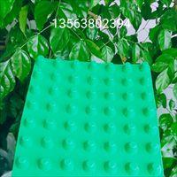 绿色排水板吉安厂家12顶板3公分车库排水板