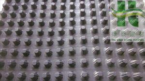 20厚排水板供应\濮阳地下室底板排水板