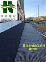 车库抗压排水板~连云港2公分10高疏水板