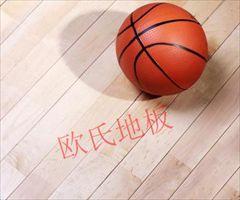 山东广饶县 体育运动木地板价格 体育木地板专用漆