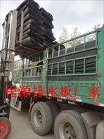 菏泽2公分车库绿化滤水板