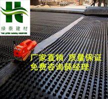 20高保定车库排水板-黄石屋顶绿化滤水板