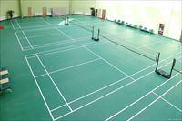 健身房羽毛球馆运动地板地胶