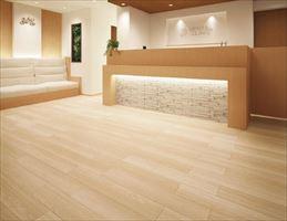 2020年丽彩PVC地板耐磨地板LYT83621
