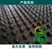惠州车库绿化疏水板(程源排水板)