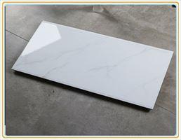 厂家直销玻化内墙砖300×450客厅印花墙面砖